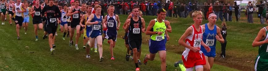 Tyler Beck competes at the State Cross Country Meet