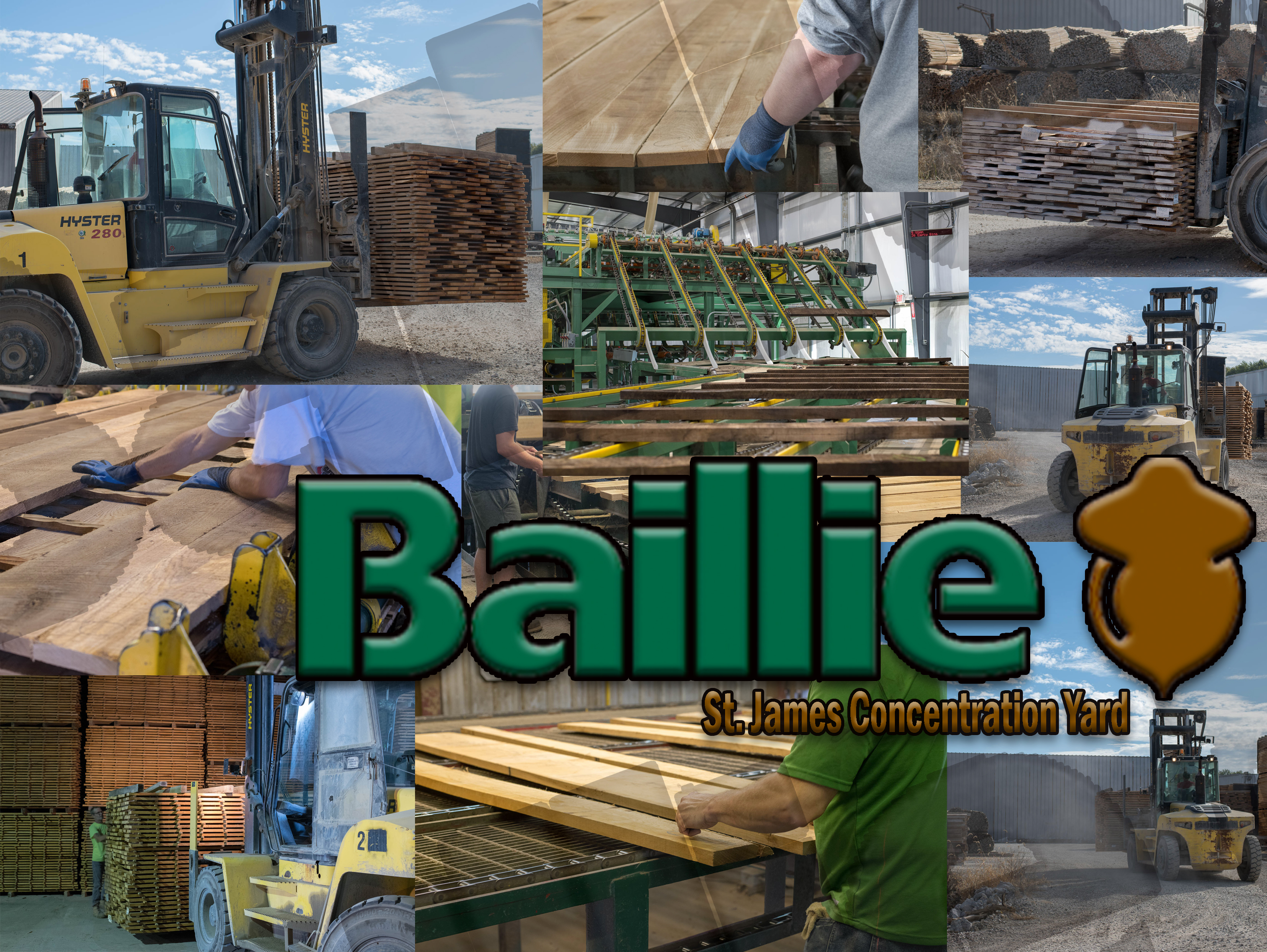 baillie collage